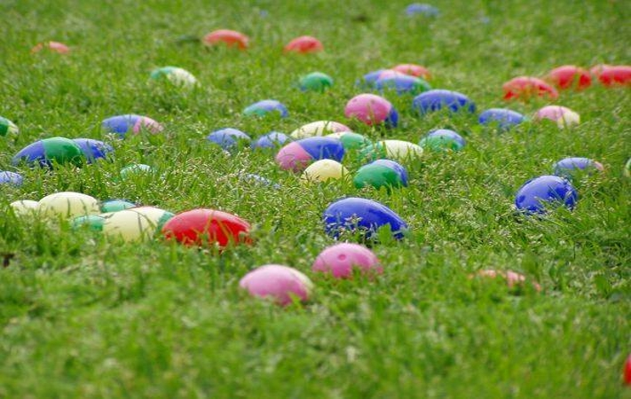 Spring Egg Hunt: Complimentary to our Youngest Members!